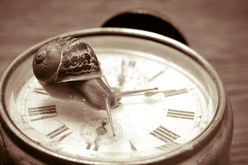 La bonne période pour faire l'éloge de la lenteur