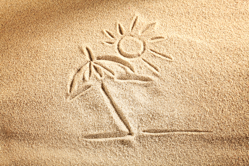 Vacances et écologie, c'est conciliable !